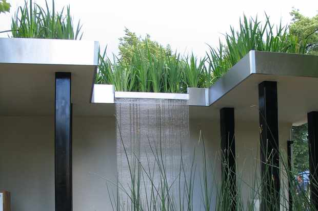 Damp-loving plants have been used to reduce water logging on this flat roof and contemporary design