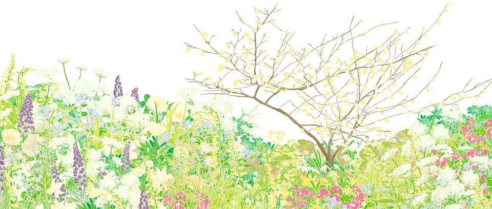 Spring Border : Free downloads in gif, jpg, pdf, and png formats.