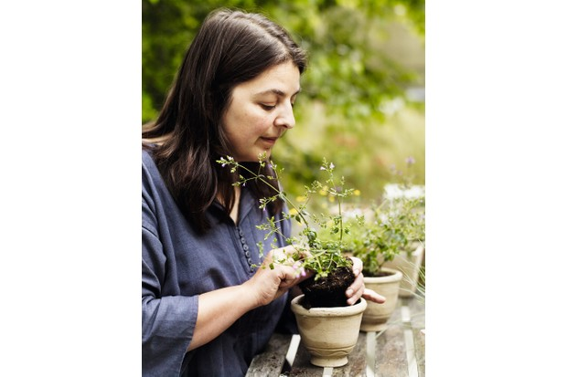 Garden designers Jinny Blom looks down at a small plant arranged in a clay pot in her hands