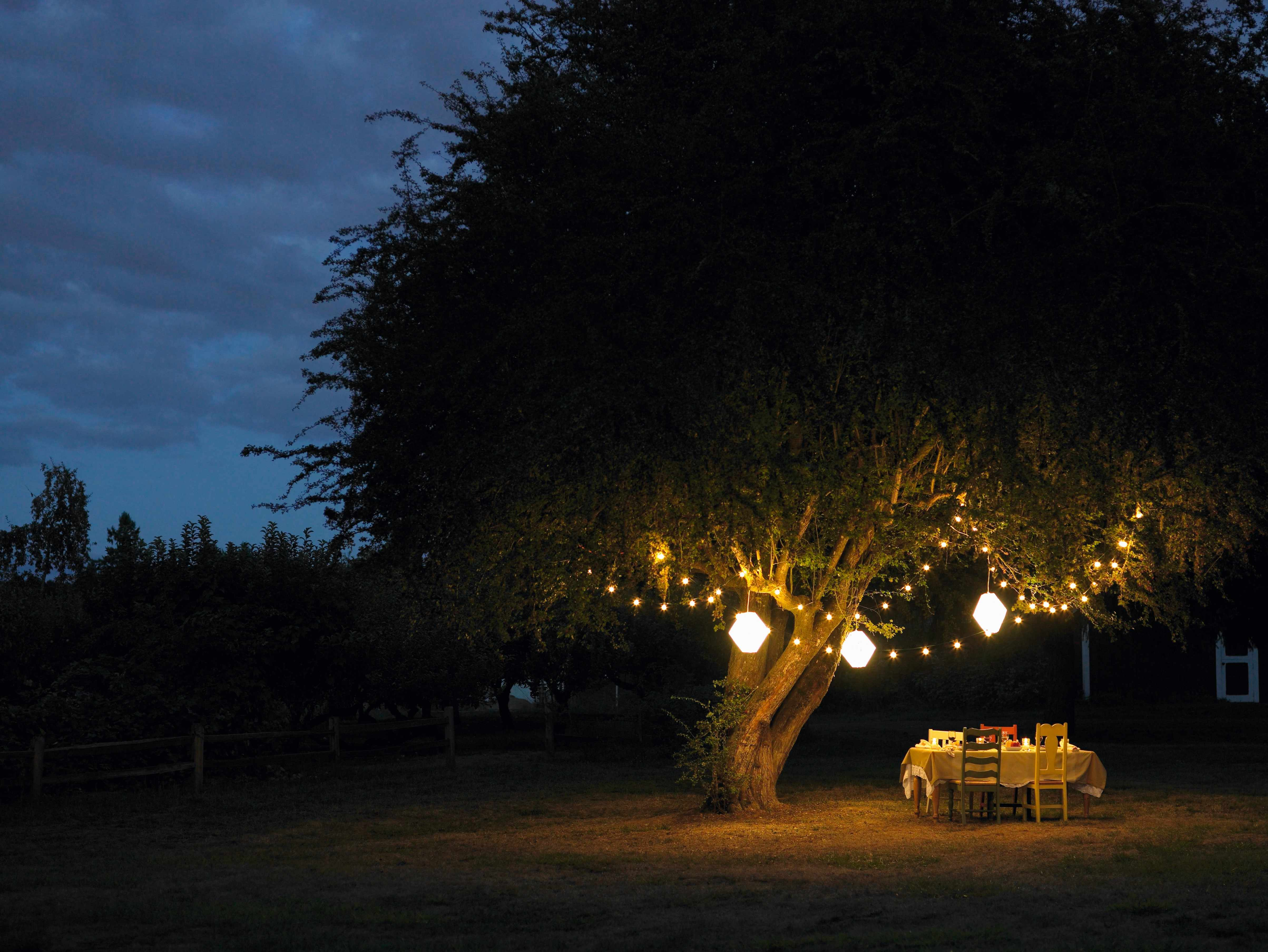 Dining table set up for an evening dinner party in the garden under a tree decorated with string lights and large lanterns