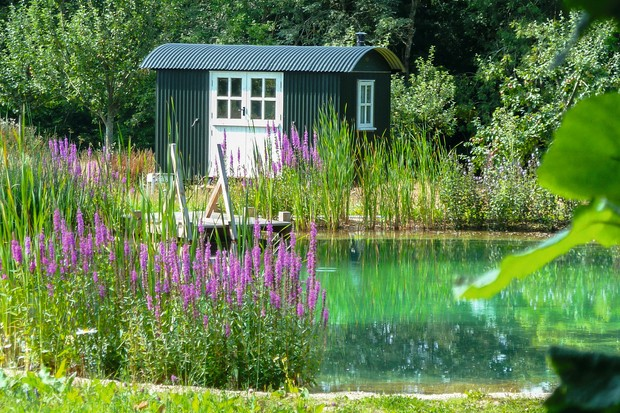 A dark green Shepherds hut is idyllically placed on the edge of a natural pond