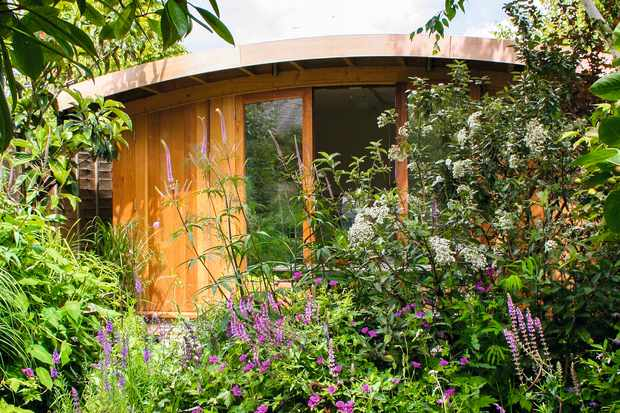 A wooden garden studio with large glass windows is nestled behind colourful planting