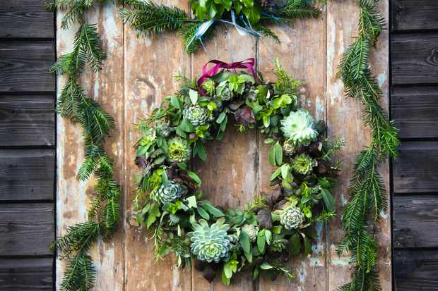 Christmas wreath with succulents