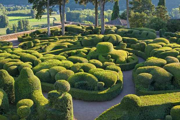 Topiary box hedges at the Marqueyssac gardens, Dordogne valley, France