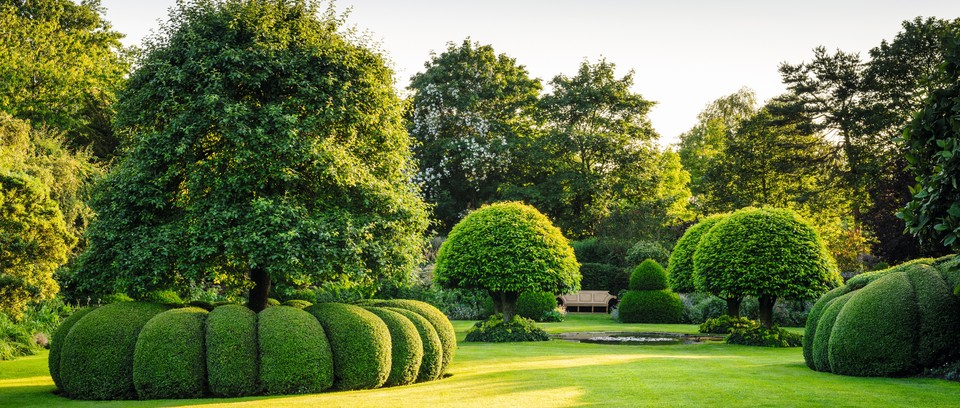 Design Solutions Topiary Gardens Illustrated