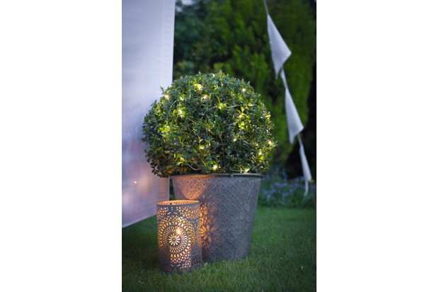 A garden lantern offers warm lighting placed next to a planted box tree dressed with fairy lights on a summers evening in the garden