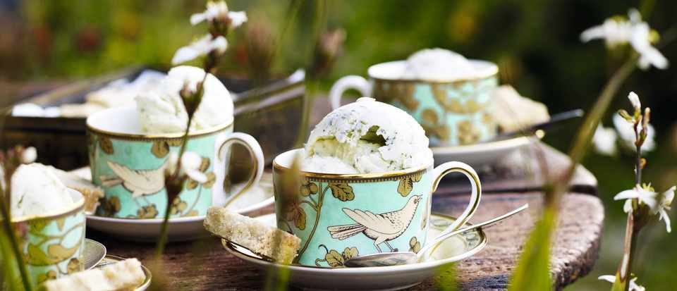 Mint Ice-cream. Photo: Andrew Montgomery