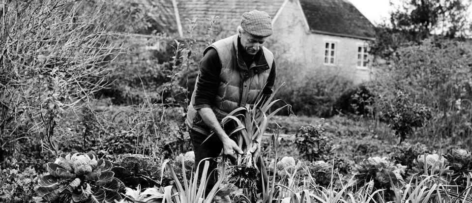 No-dig gardener Charles Dowding in his quarter-acre organic vegetable garden in Somerset