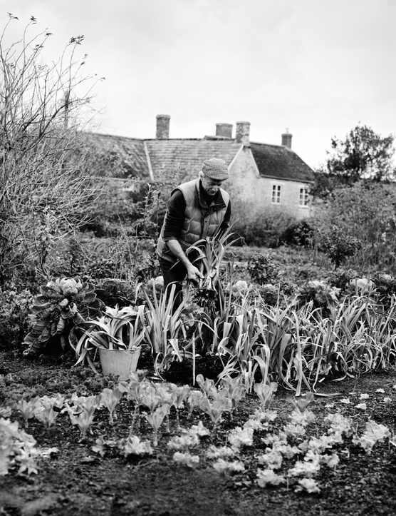 No-dig gardener Charles Dowding in his quarter-acre organic vegetable garden in Somerset