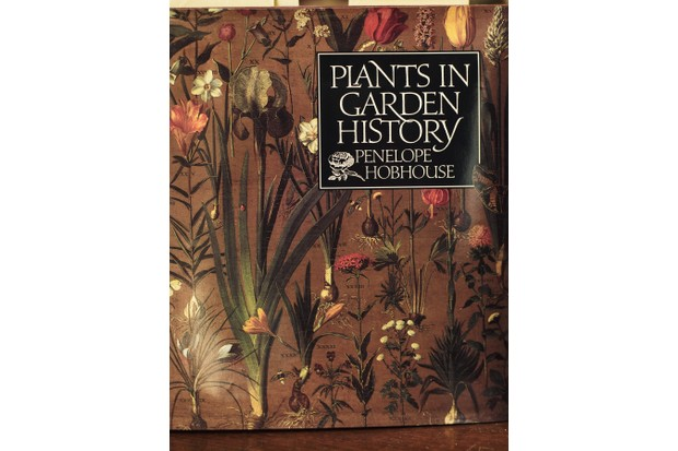 Plants in Garden History by Penelope Hobhouse