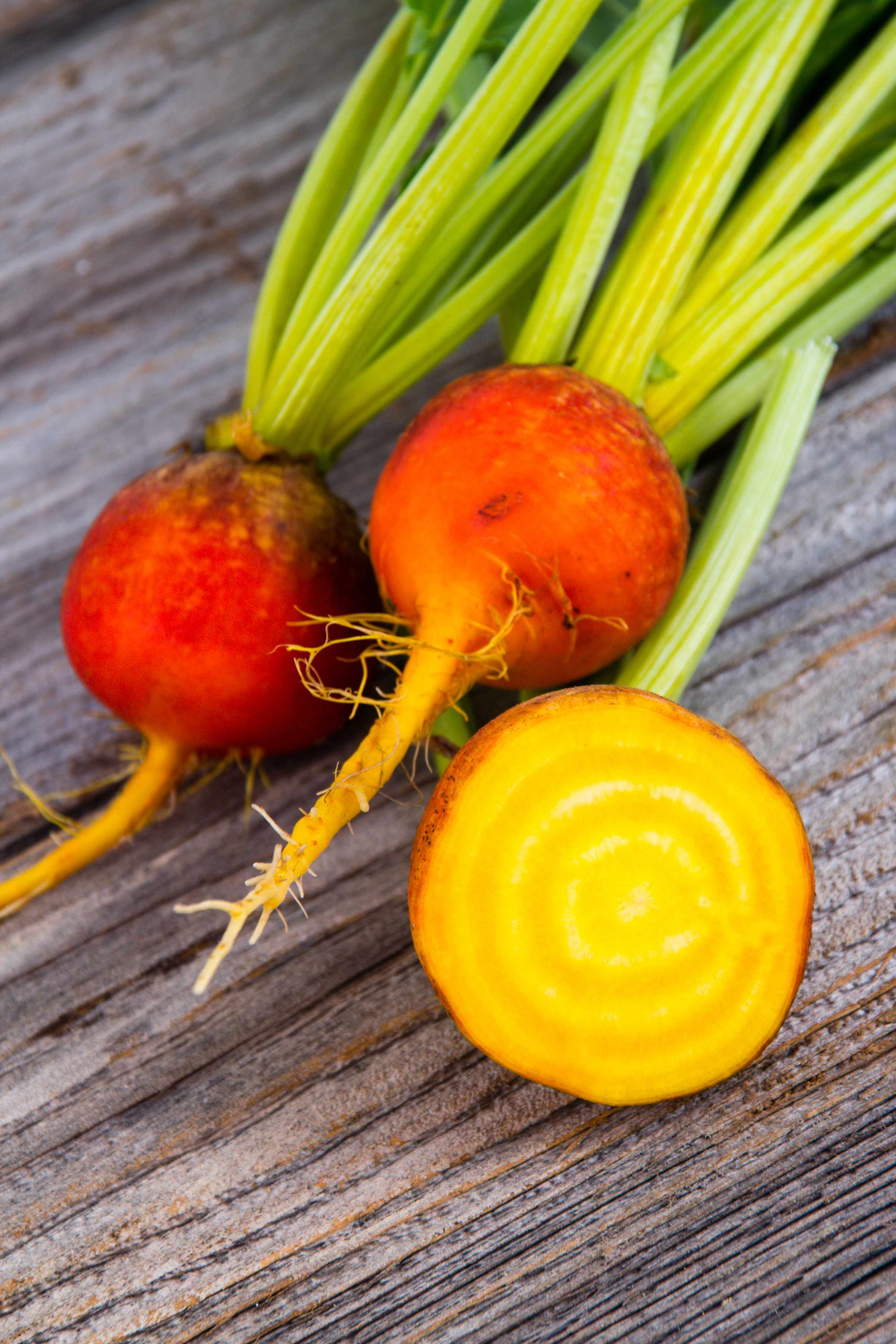 golden beets freshly harvested raw on rustic wood background