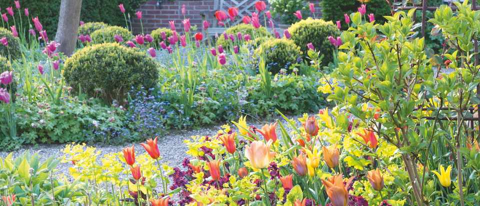 How To Plant Bulbs In Autumn For Spring Display Gardens Illustrated