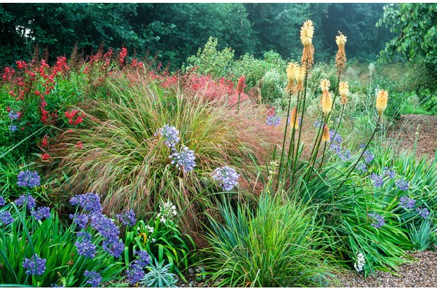 Holbrook Garden, a naturalistic garden builds from delicate spring bulbs to bold tapestries