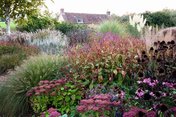 The Lady Farm gardens is a farmhouse garden in schemes of grasses and low perennials