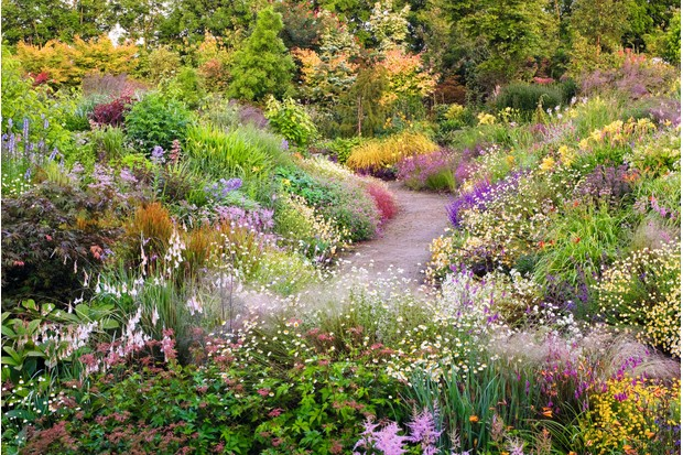 Keith Wiley's Wildside Garden features a depth of naturalistic planting with expansive colour