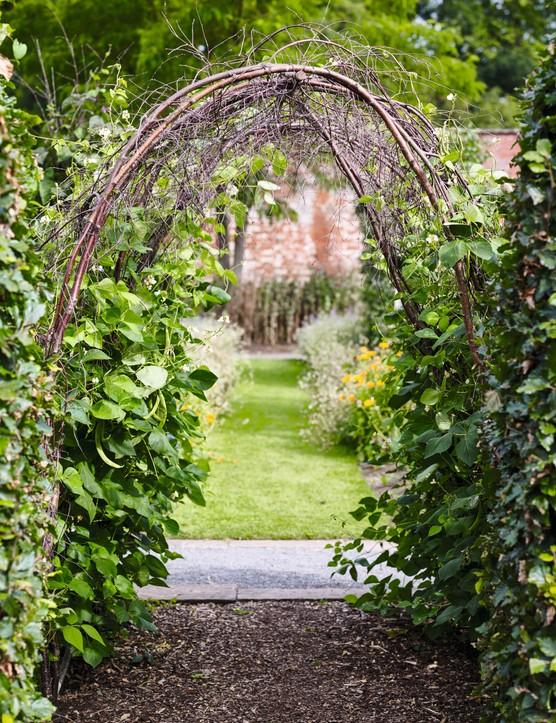 Garden Design Courses Gardens Illustrated