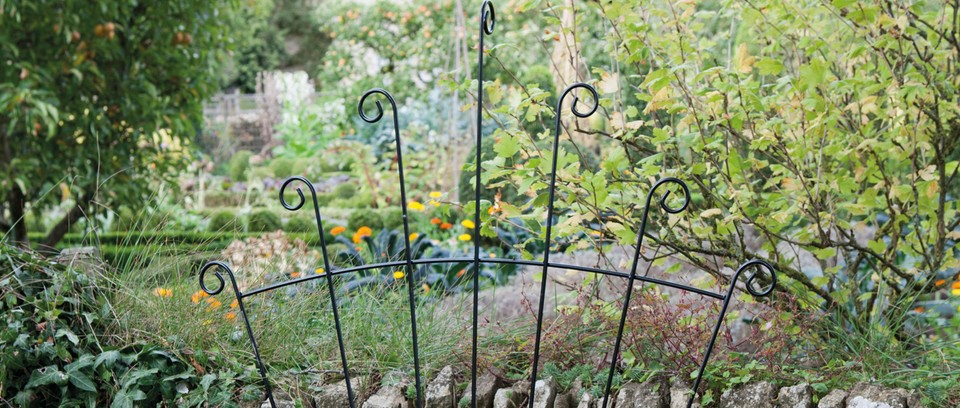 The Best Supports For Climbing Plants Gardens Illustrated