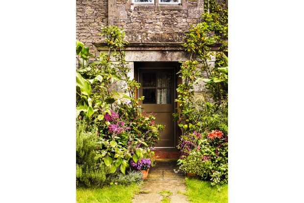 A cottage entrance filled with colourful plants and flowers