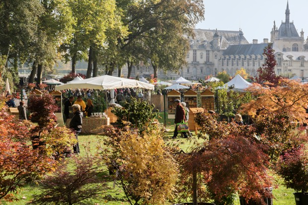 Chantilly autumn plant fair