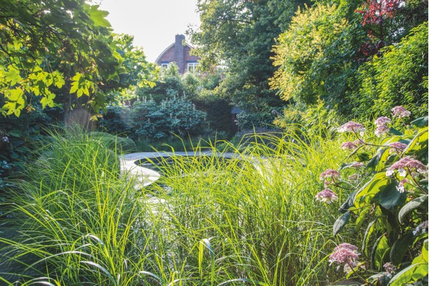 Grasses create a border between a swimming pool area and seating area within the garden