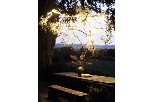An over hanging branch from a tree has been wrapped in string lights to add ambience to the dining table underneath, set up with a vase and snacks.