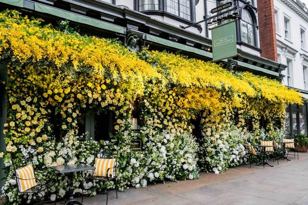 The Ivy Chelsea. Photo: Philip Berryman