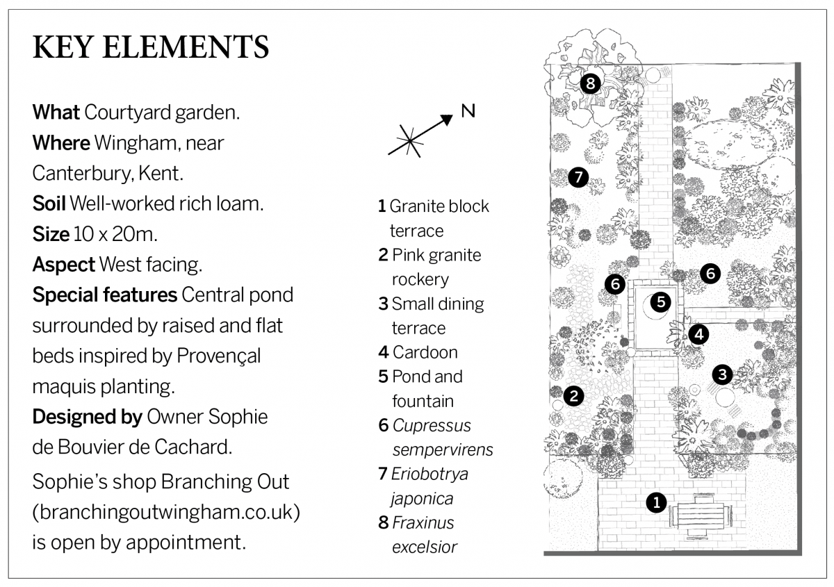 Illustration of a showing a small garden planting plan