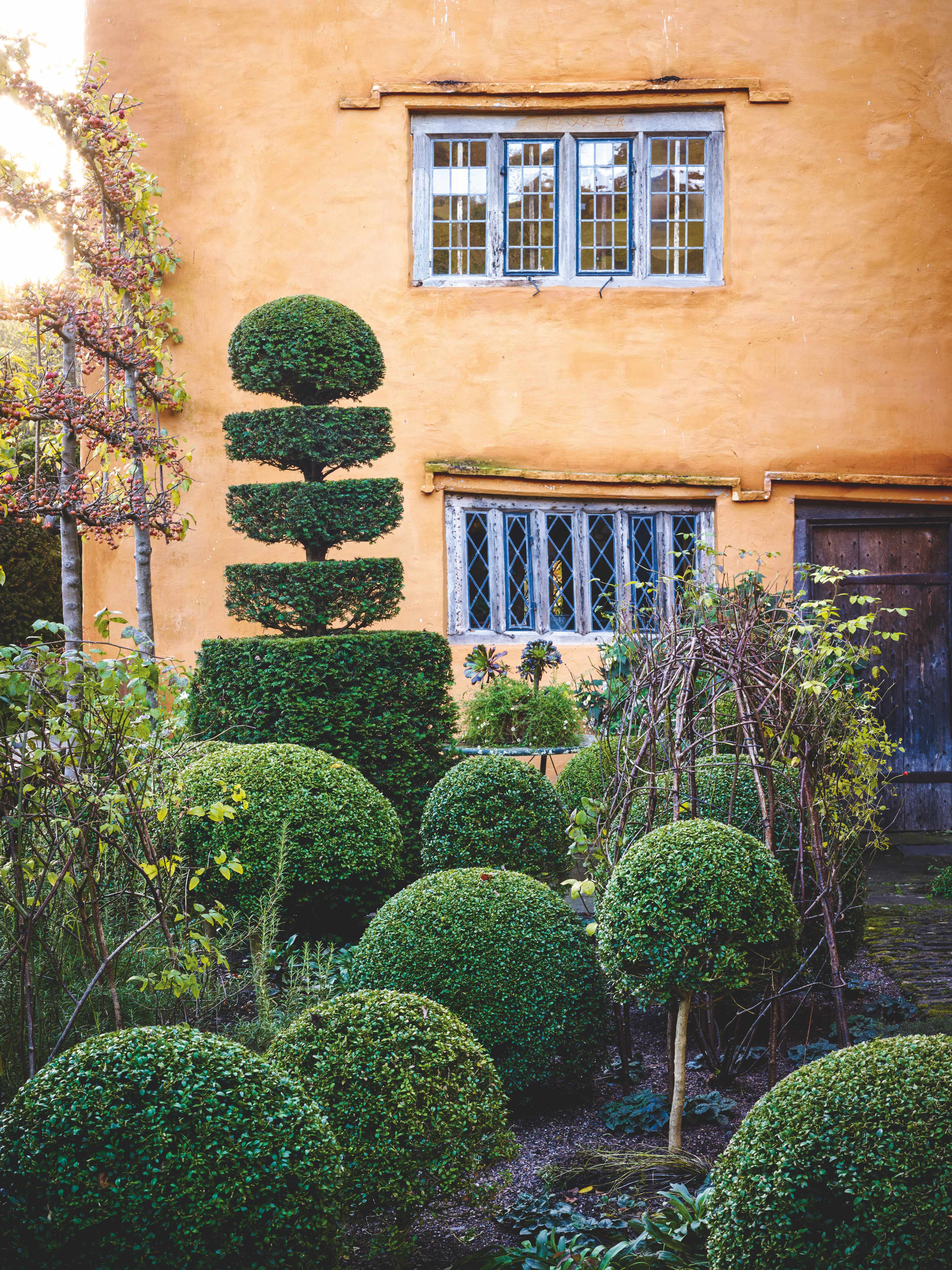 Box & Yew Topiary against Pleached Crab Apples