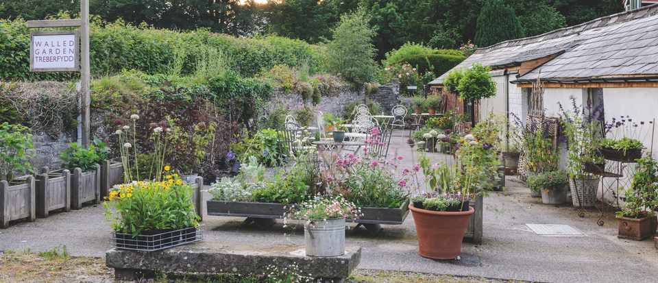 50 best plant nurseries - Gardens Illustrated