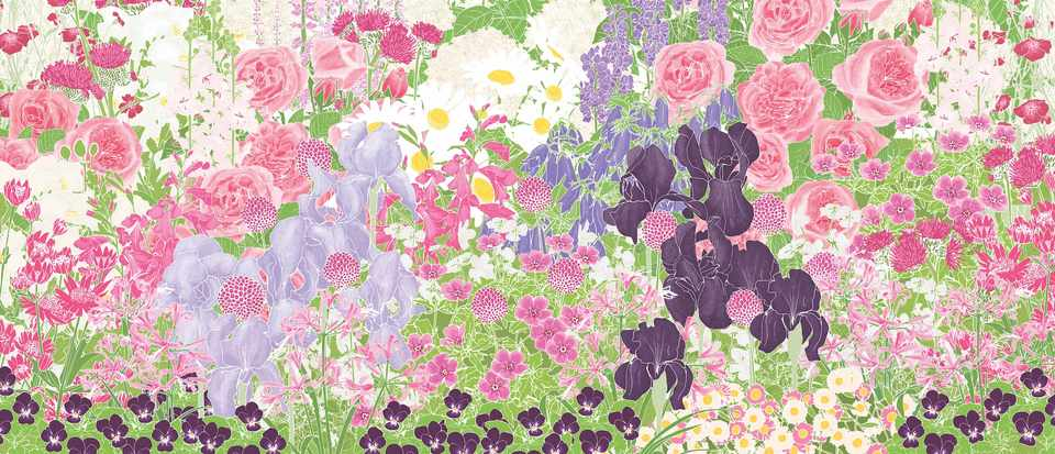 Romantic flower border: download our planting plan ...