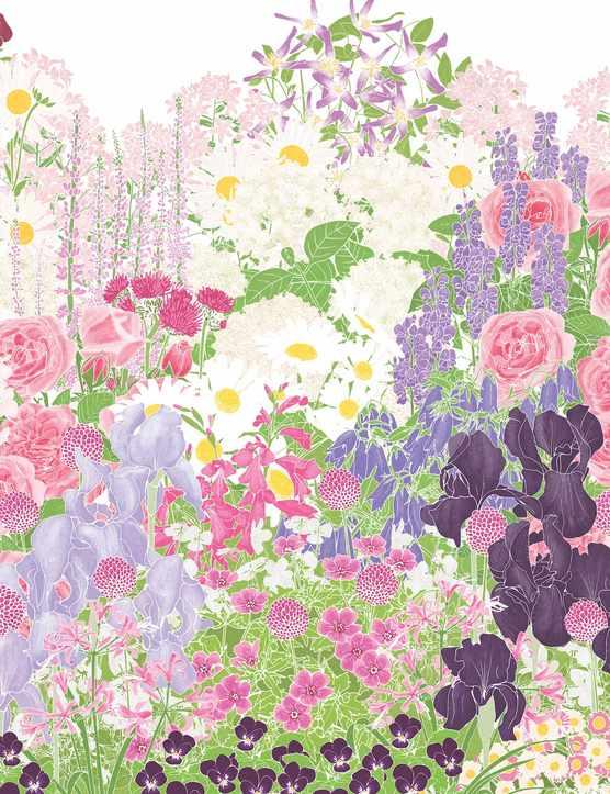 Jinny blom flower border