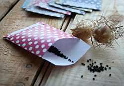Step 4 of DIY seed pocket template