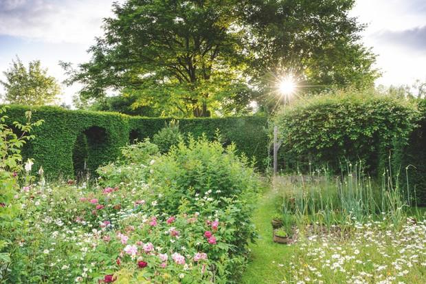 The rose garden at Morville Hall