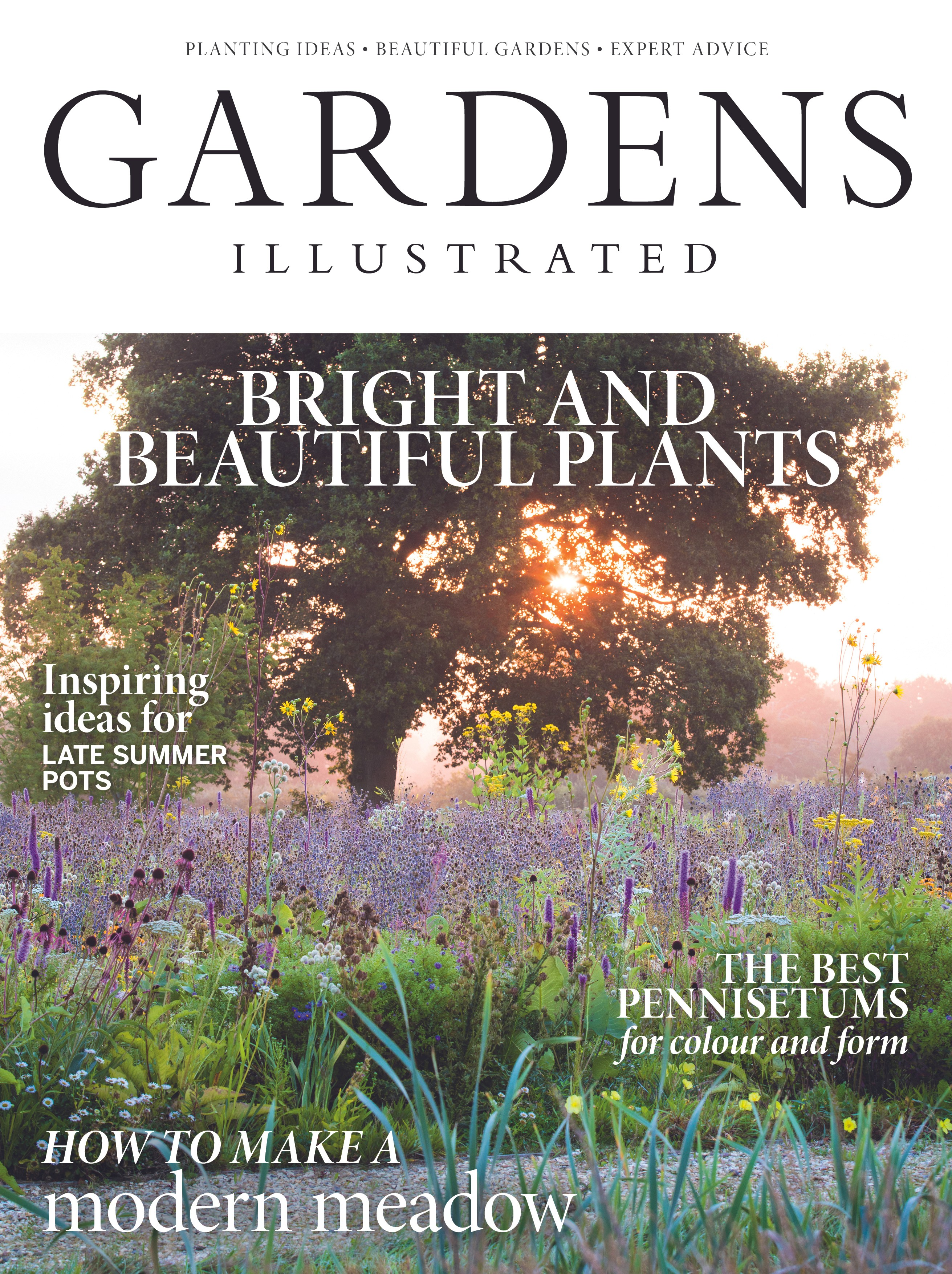 September 2018 issue of Gardens Illustrated cover by Claire Takacs