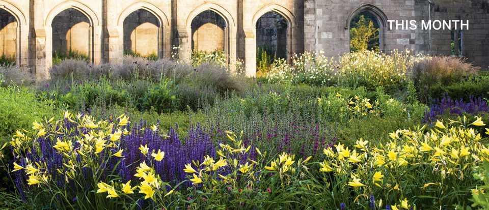 The Special Issue 2017 of Gardens Illustrated