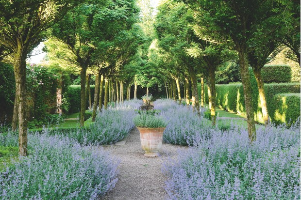 Cothay Manor is a prime example of how you can achieve mesmerising symmetrical balance in the garden. It also demonstrates the balance between naturalistic landscape and craftily tamed, manicured nature.