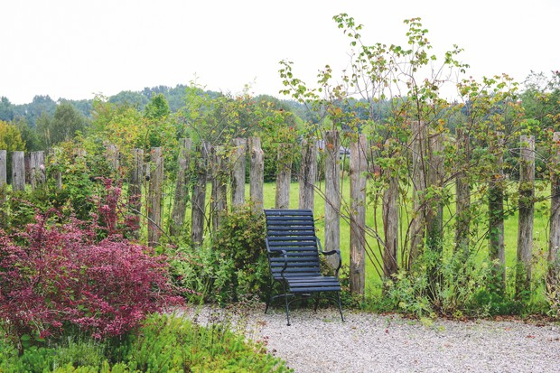 A natural panelled fence supporting young trees. A backdrop the a seating area