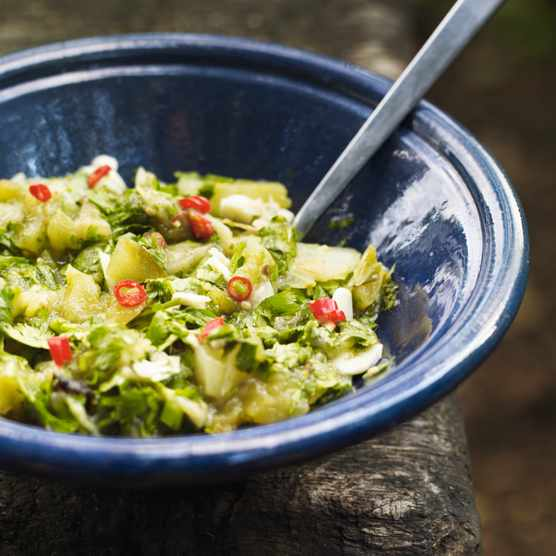 A recipe for relish using green tomatoes, aubergine and fresh chilli