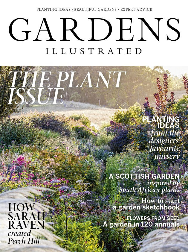 The Plant Issue 2018