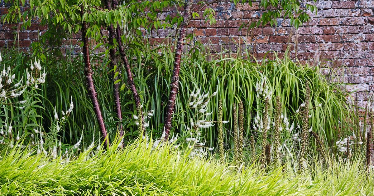 Helen Elks-Smith's garden design in Hampshire