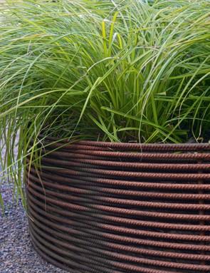 Rusted rebar raised bed with Carex elata Aurea (Bowles golden sedge)