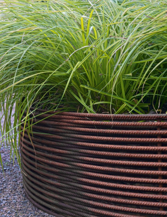 Rusted rebar raised bed with Carex elata Aurea (Bowles golden sedge)
