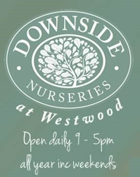 Downside Nurseries 1