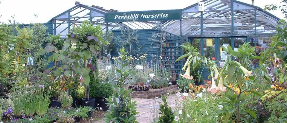 Perryhill Nurseries Ltd - Photo of Display area 1 - lara covill (1)