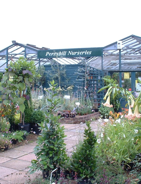 Perryhill Nurseries Ltd - Photo of Display area 1 - lara covill (1)