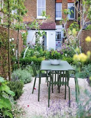 Town garden in Whitstable