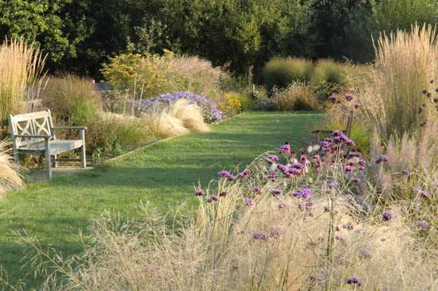meadowgate_nursery_2