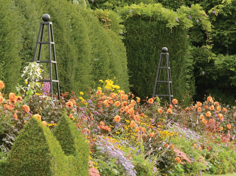 Win a plant obelisk from Harrod Horticultural, worth £290