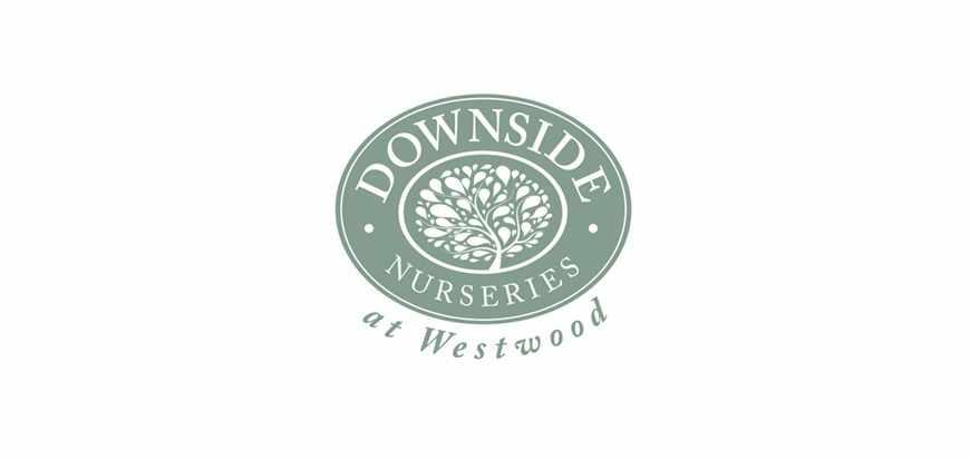 Downside Web.indd