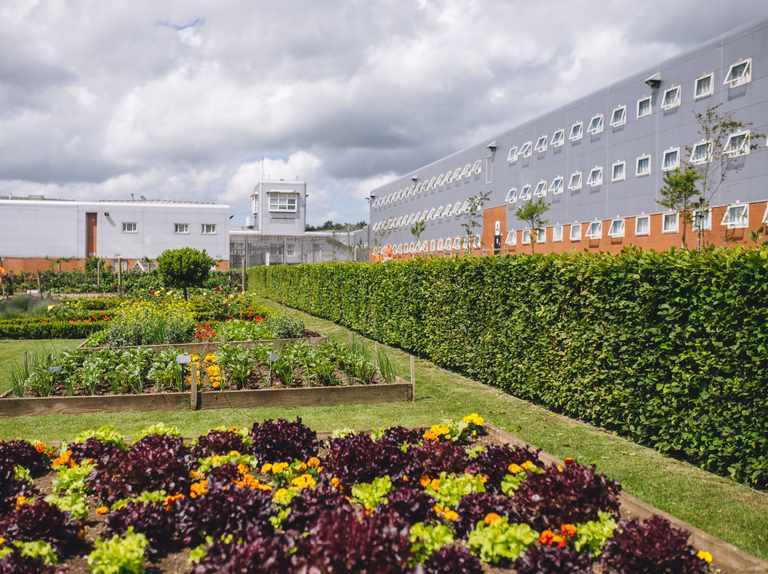 Welsh prison garden wins RHS award